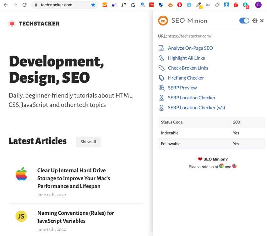 SEO Minion's dashboard overview on the right side of the browser